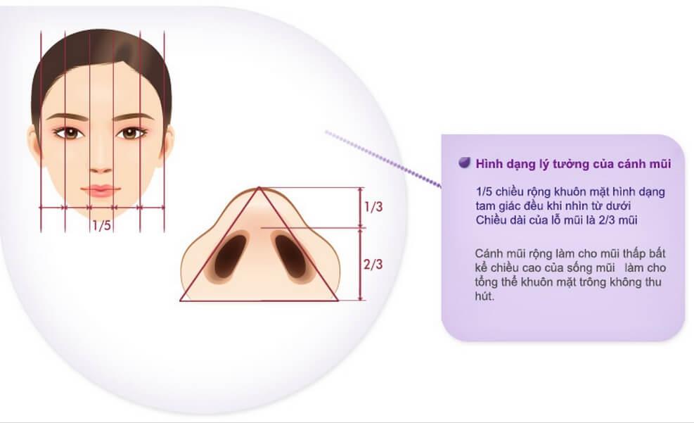 thu gọn cánh mũi Những điều cần biết về thu gọn cánh mũi